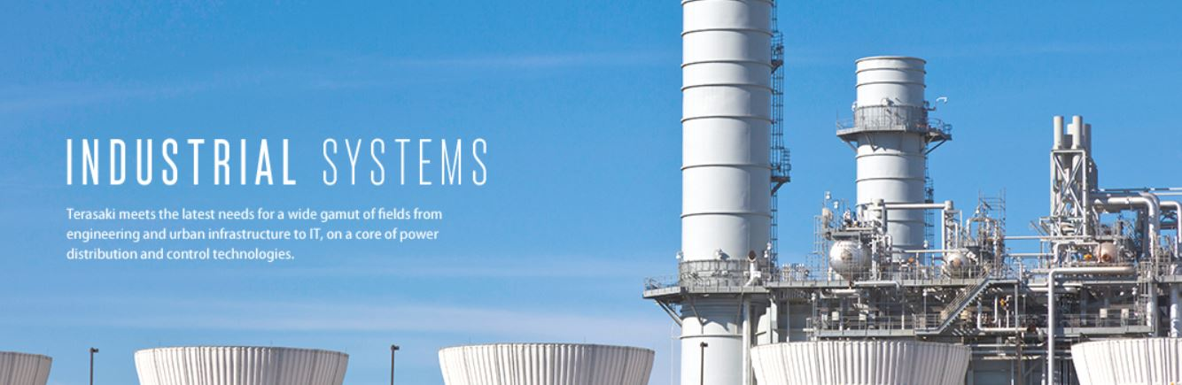 Indus systems
